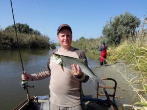 spring_fishing