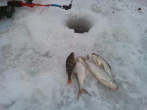winter_fishing